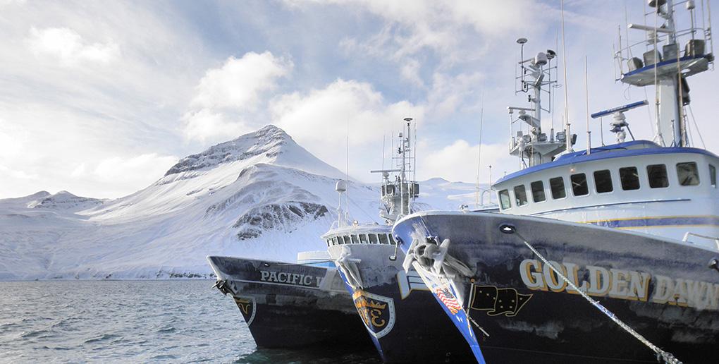 天然のおいしさを、アラスカに。